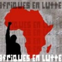 Bulletin d'information du groupe de travail « Afriques en lutte » (n°22- avril-mai 2013)