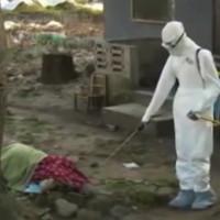 Interview télévisé du Dr Guy Alovor sur l'épidémie EBOLA