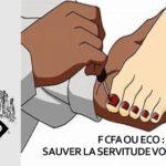L'AFRIQUE DANS LE MONDE DE DEMAIN : S'affranchir de la servitude monétaire volontaire