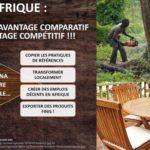 PRODUIRE EN AFRIQUE AU LIEU D'EXPORTER SANS TRANSFORMATION : Le Ghana prend les devants dans le secteur bois !