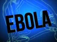 Questions sur l'origine du virus Ebola dans Le Grand Débat de Africa n°1