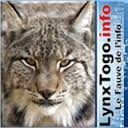 INTERVIEW AVEC LYNXTOGO.INFO
